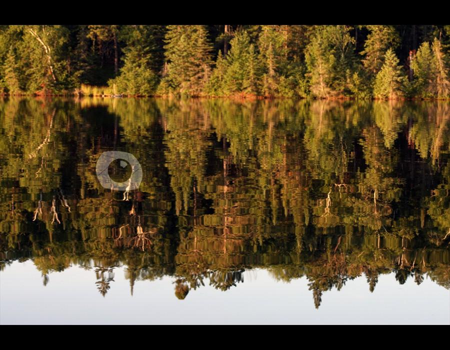 Antler Lake Reflection2 Big Fork, MN
