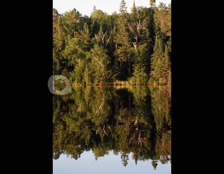Antler Lake Reflection Portrait1 Big Fork, MN