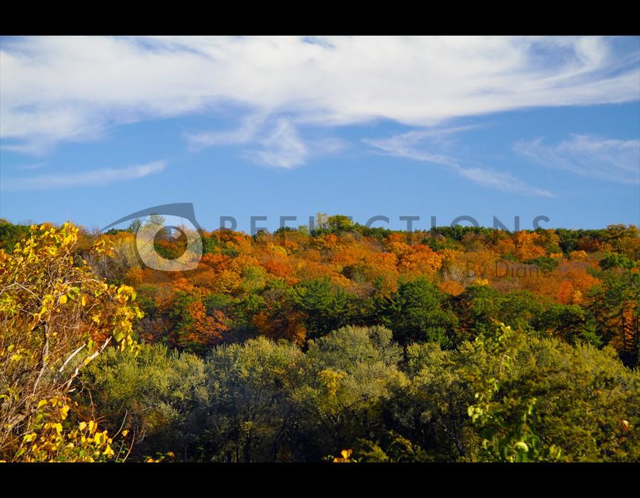 Autumn on St. Croix, MN1